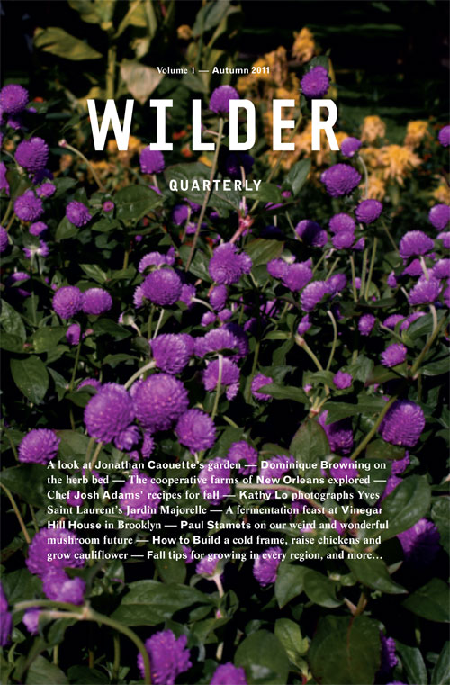 Wilder-quarterly1-thumb-500x761-33026